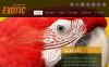 Szablon Facebook HTML CMS #46327 na temat: zwierzęta egzotyczne New Screenshots BIG