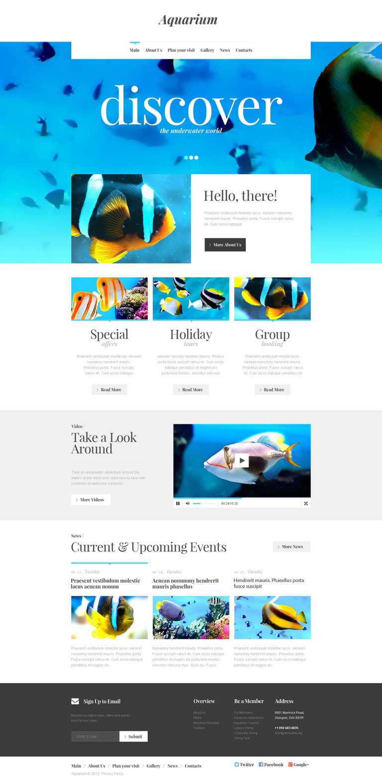 Fish Responsive Website Template New Screenshots BIG