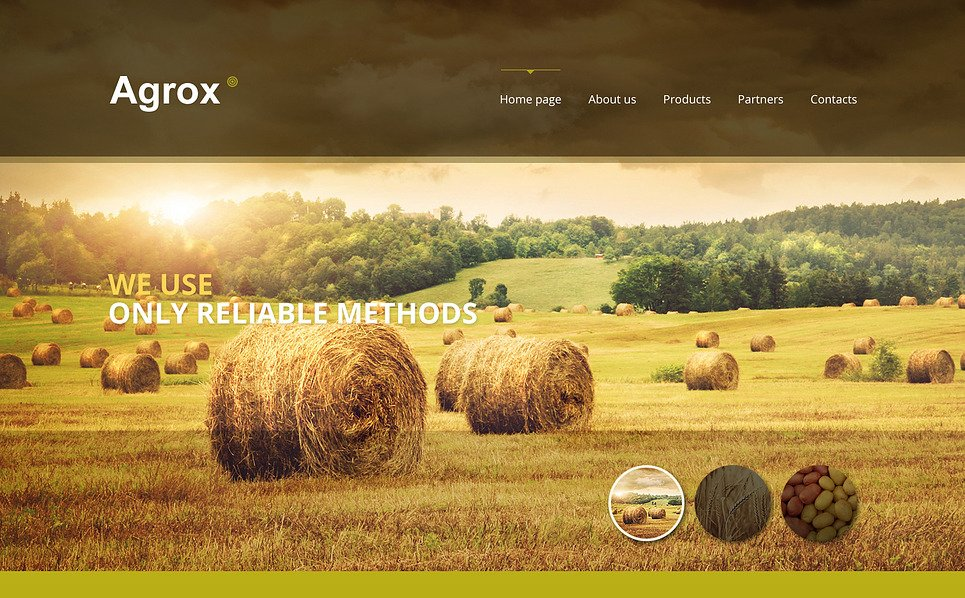 Responsive Website template over Boerderij New Screenshots BIG