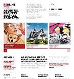 Software Website  Template 46540
