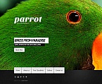 Animals & Pets Moto CMS HTML  Template 46580
