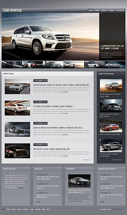 ADOBE Photoshop Template 46594 Home Page Screenshot
