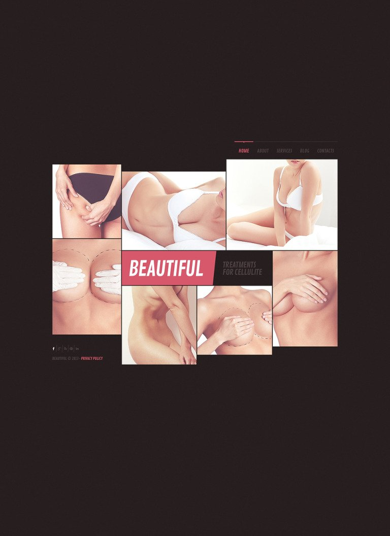 Plastic Surgery Website Template New Screenshots BIG