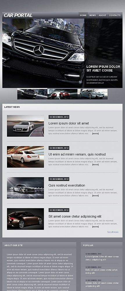 ADOBE Photoshop Template 46606 Home Page Screenshot