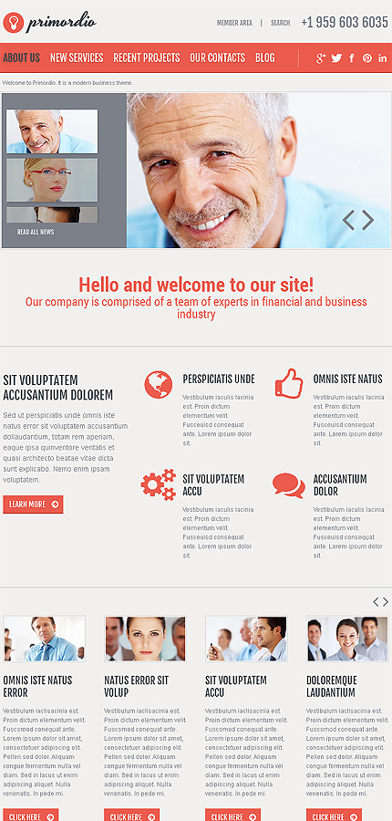 Joomla Theme/Template 46639 Main Page Screenshot
