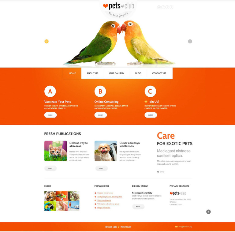 Animals & Pets Responsive Joomla Template New Screenshots BIG