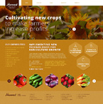 Agriculture Website  Template 46713