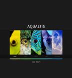 Animals & Pets Website  Template 46716