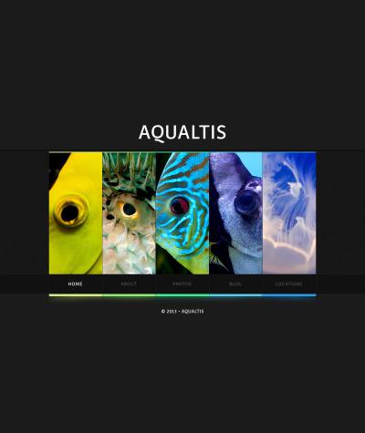 Fish Web Sitesi Şablonu