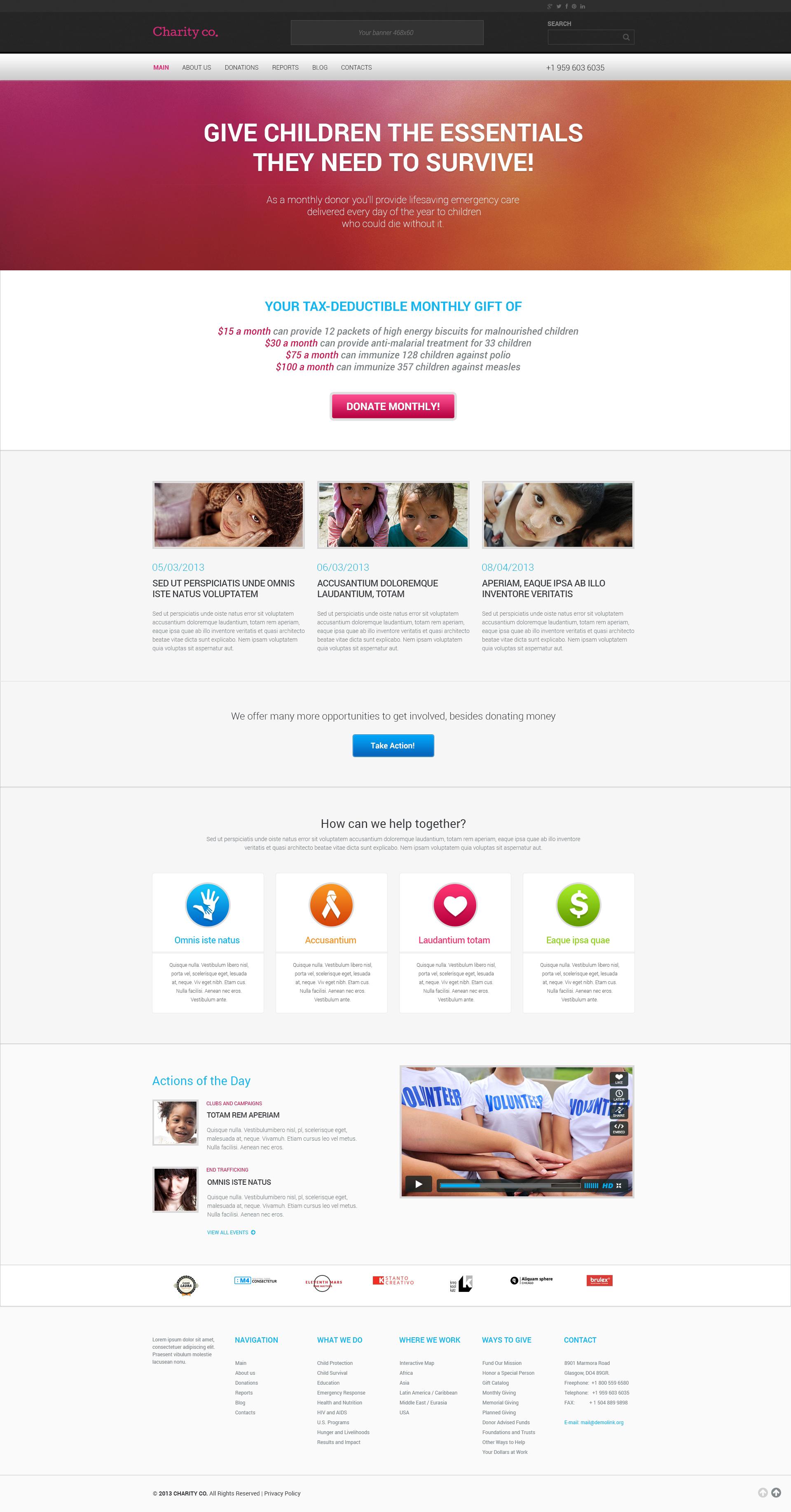 Reszponzív Simple Charity WordPress sablon 46791 - képernyőkép