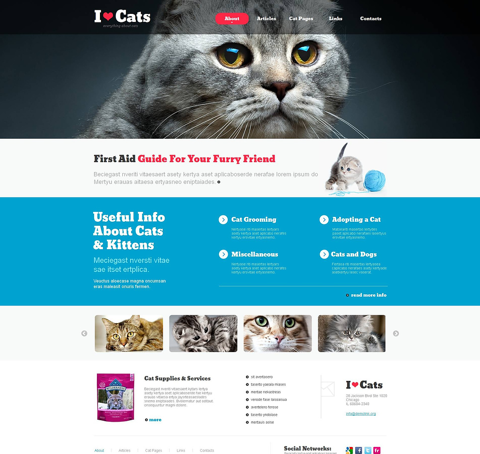 Cats Web Template with Sliding Thumbnails - image