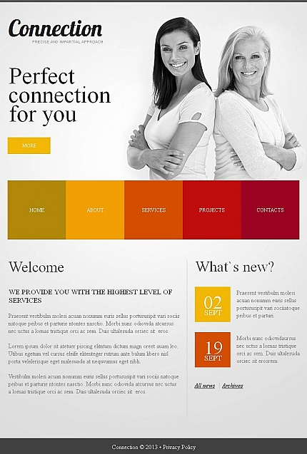 ADOBE Photoshop Template 46878 Home Page Screenshot