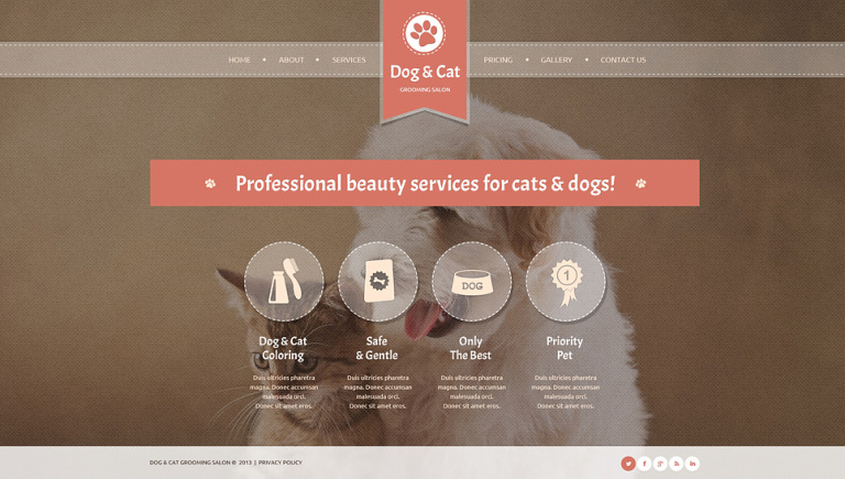 Cat Website Template New Screenshots BIG