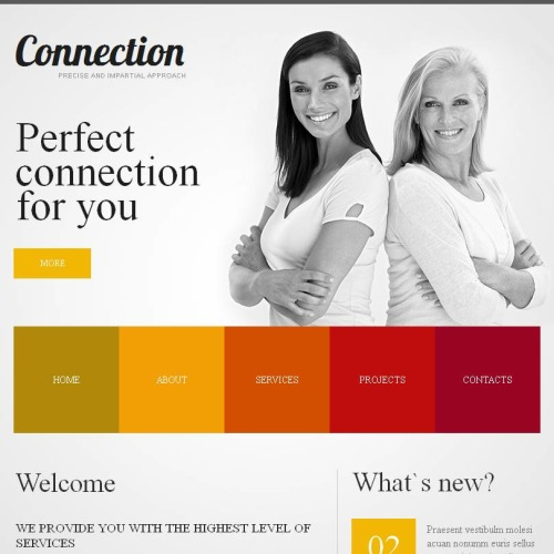 Connection - Facebook HTML CMS Template