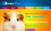 Guinea Pigs Facebook HTML CMS Template New Screenshots BIG