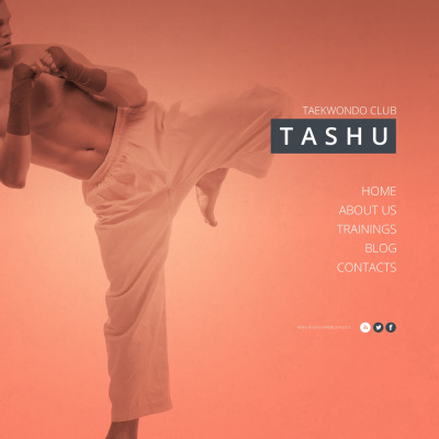 18 best martial arts website templates toneelgroepblik Gallery
