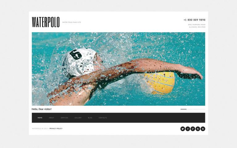 Polo Website Template New Screenshots BIG