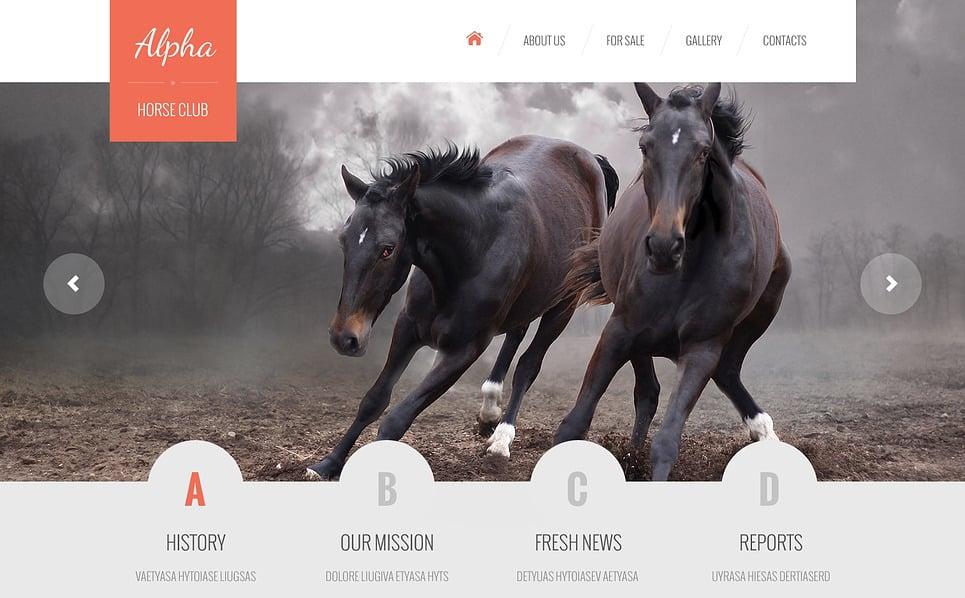 Responsive At  Web Sitesi Şablonu New Screenshots BIG