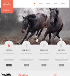 Animals & Pets Website  Template 46921