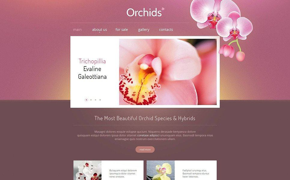 Szablon Moto CMS HTML #46931 na temat: kwiaty New Screenshots BIG