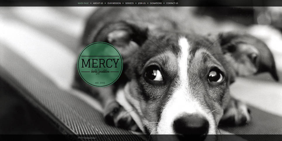 Animal Charity Web Template with Background Photo Gallery - image