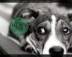 Animals & Pets Moto CMS HTML  Template 46932