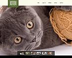 Animals & Pets Moto CMS HTML  Template 46933
