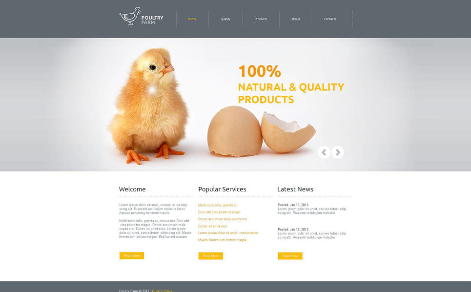 Moto CMS HTML Vorlage für Geflügelfarm  New Screenshots BIG