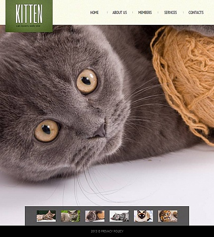 ADOBE Photoshop Template 46950 Home Page Screenshot