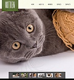 Animals & Pets Facebook HTML CMS  Template 46950