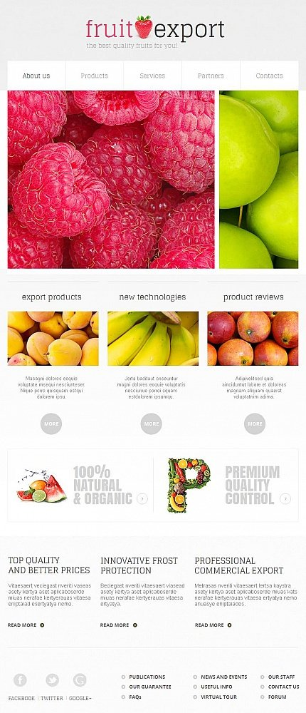 ADOBE Photoshop Template 46957 Home Page Screenshot