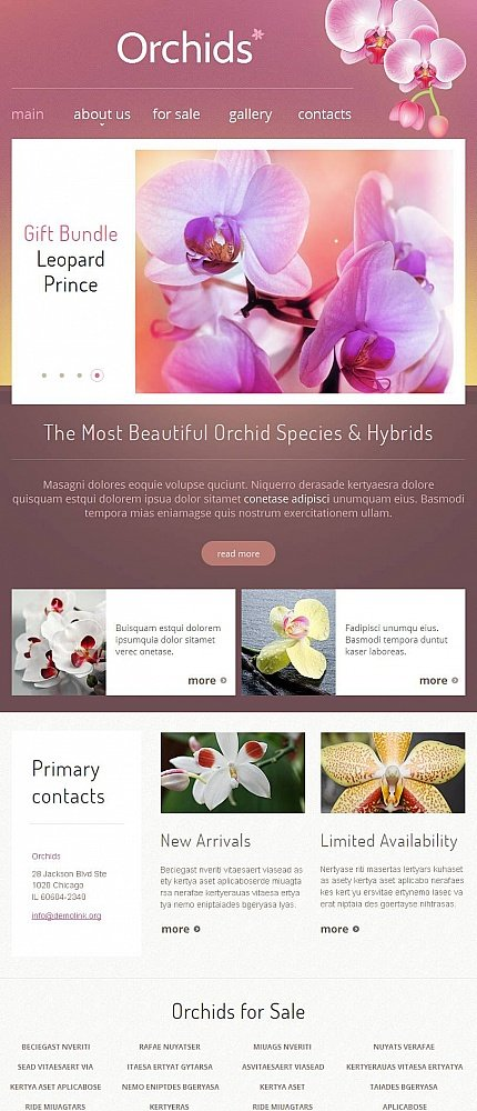 ADOBE Photoshop Template 46967 Home Page Screenshot