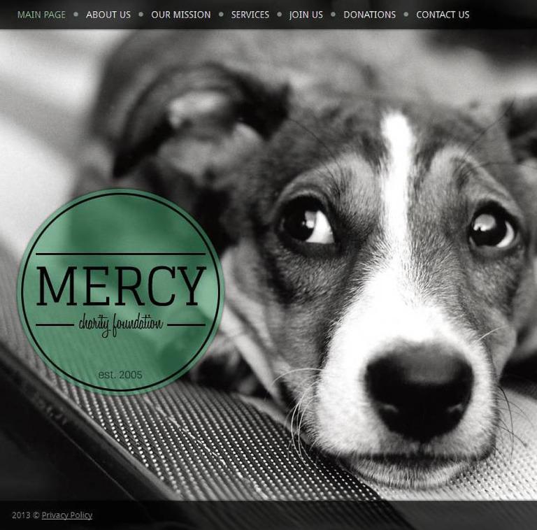 Animal Shelter Facebook HTML CMS Template New Screenshots BIG