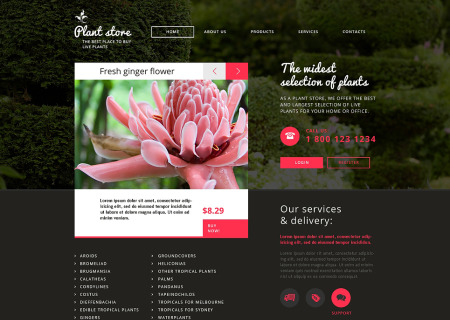 Flower Shop Responsive