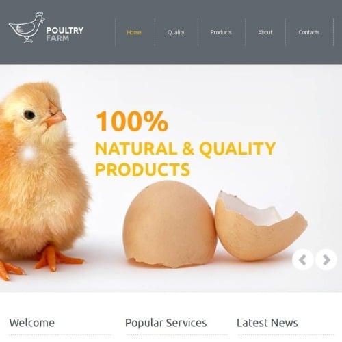 Poultry Farm - Facebook HTML CMS Template