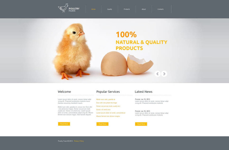 Poultry Farm Moto CMS HTML Template New Screenshots BIG
