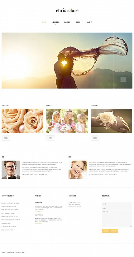 ADOBE Photoshop Template 47039 Home Page Screenshot