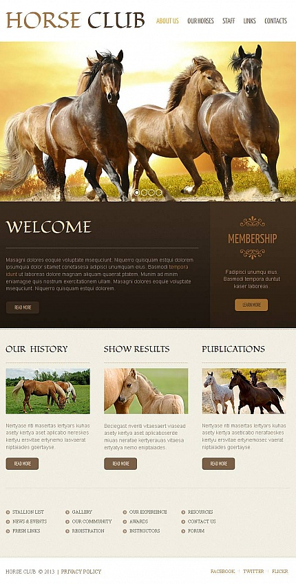 ADOBE Photoshop Template 47043 Home Page Screenshot