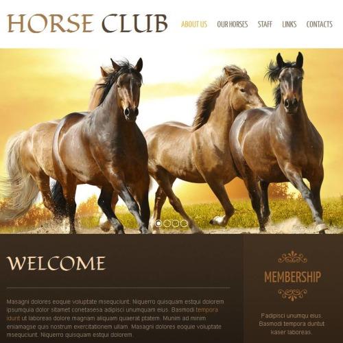 Horse Club - Facebook HTML CMS Template