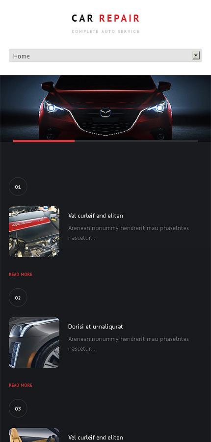 WordPress Theme/Template 47234 Main Page Screenshot