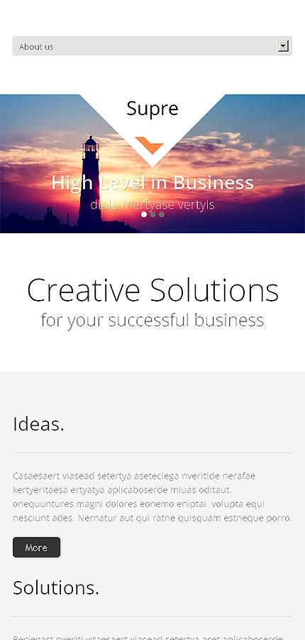 WordPress Theme/Template 47235 Main Page Screenshot