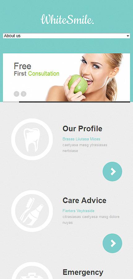 Joomla Theme/Template 47241 Main Page Screenshot