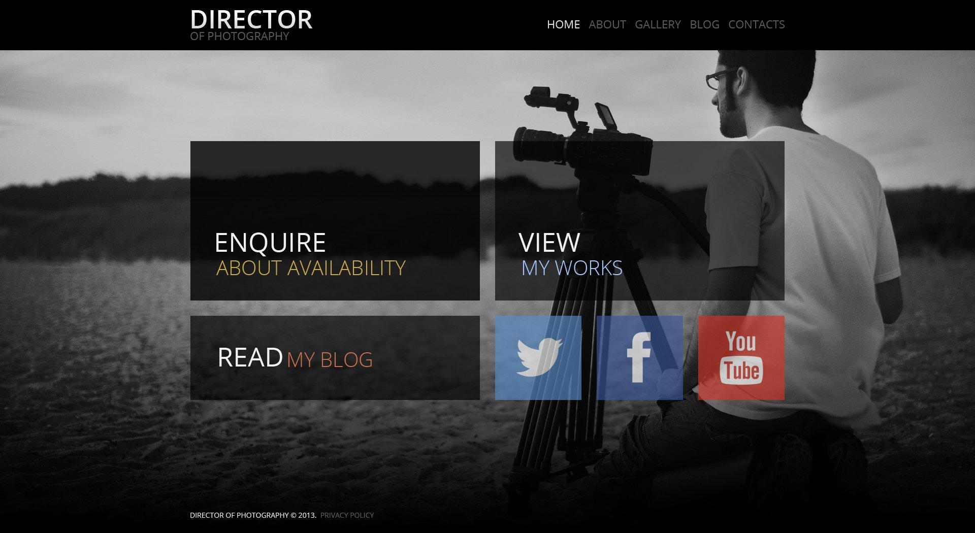 """""""Fancy Photographer Portfolio"""" - адаптивний WordPress шаблон №47223 - скріншот"""