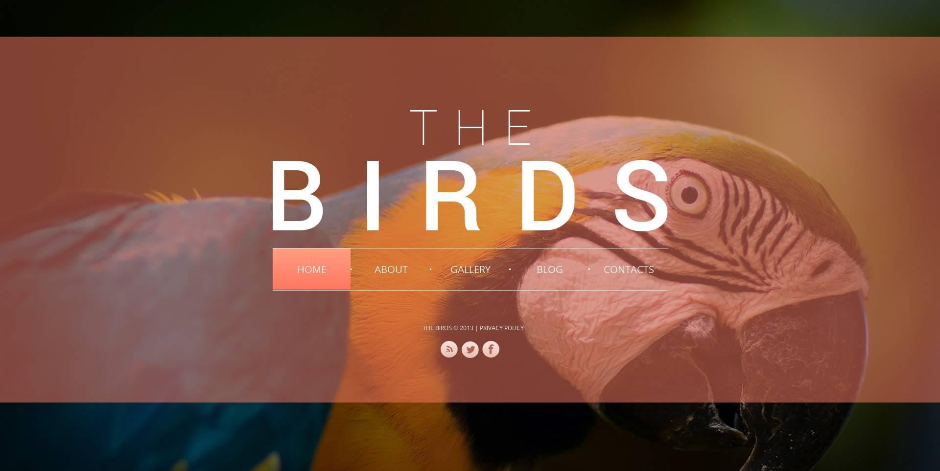 Template Moto CMS HTML #47209 per Un Sito di Uccelli
