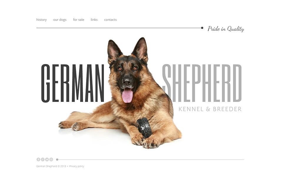 Website Vorlage für Hunde New Screenshots BIG