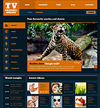 Media Website  Template 47350