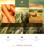 Agriculture Website  Template 47428