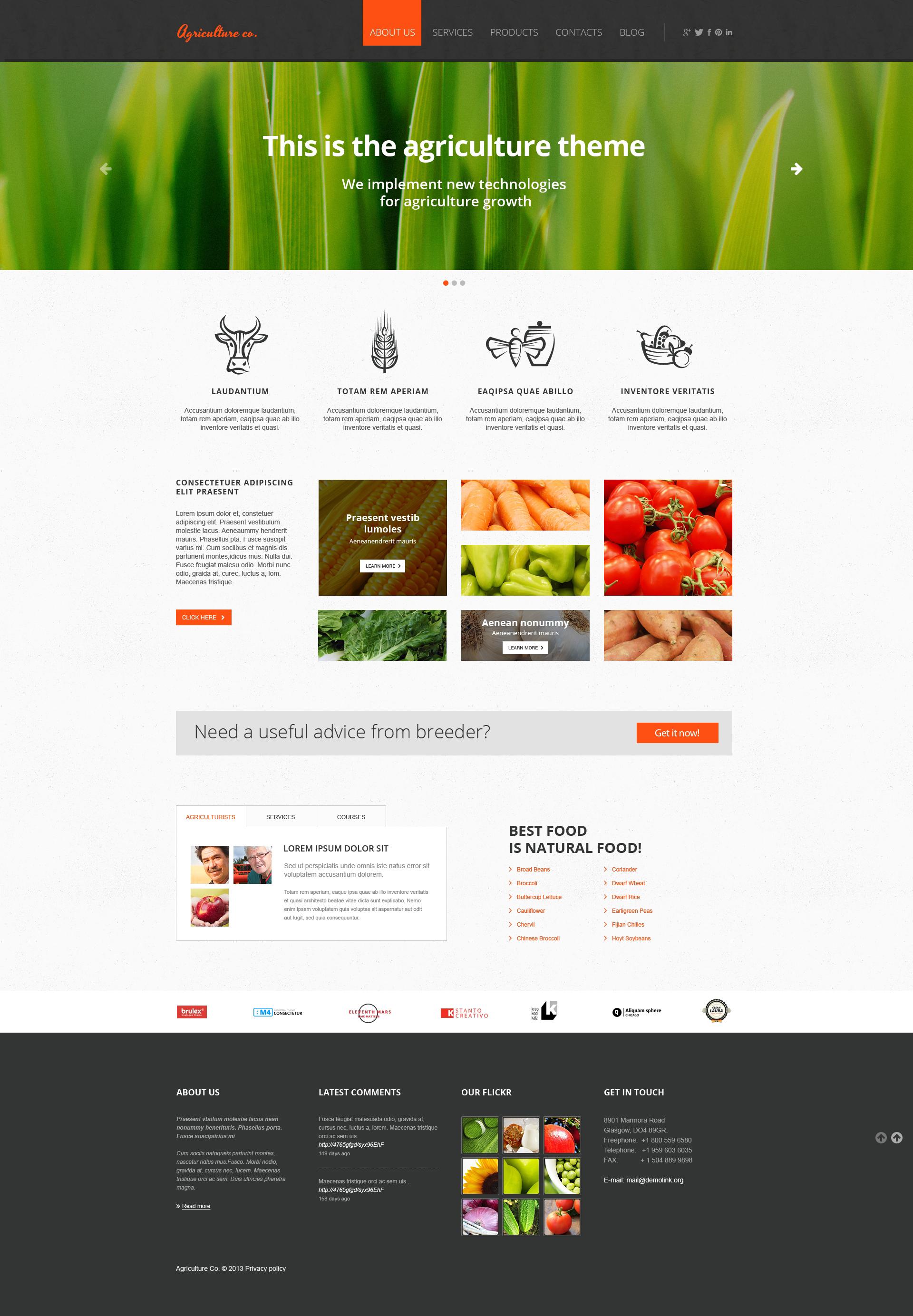 Fruit Responsive Website Template