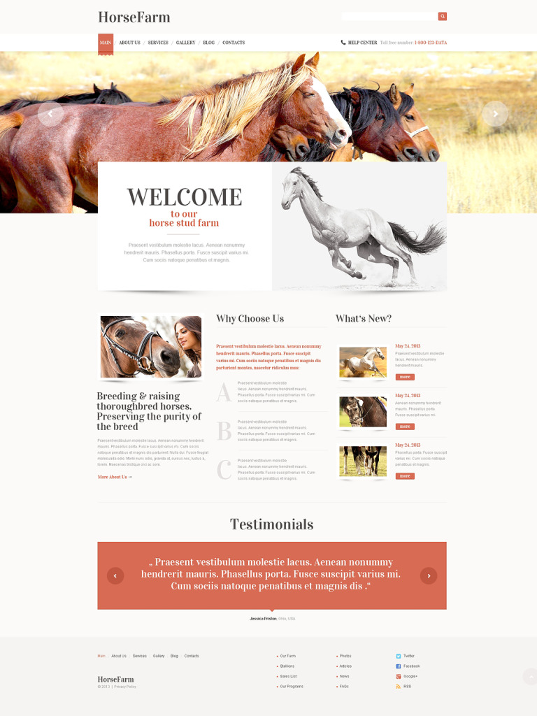 Promotion of Horse Farms WordPress Theme New Screenshots BIG