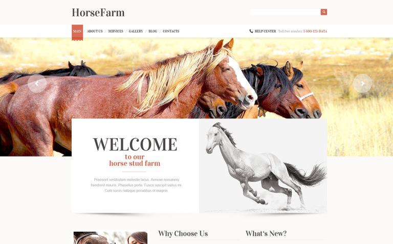 Promotion of horse farms wordpress theme 47403 promotion of horse farms wordpress theme new screenshots big yadclub Images